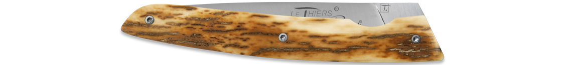 LE THIERS ® - Mammoth Crust handle